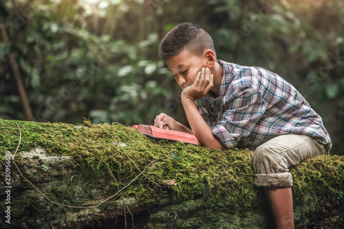 Fotografia, Obraz  Boy reading book or holy bible on tree with moss