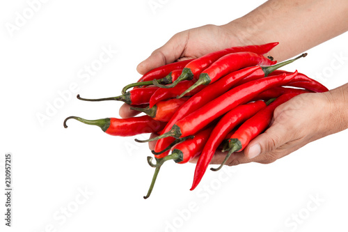 Spoed Foto op Canvas Hot chili peppers red hot pepper in hand,Chili isolated from the background.