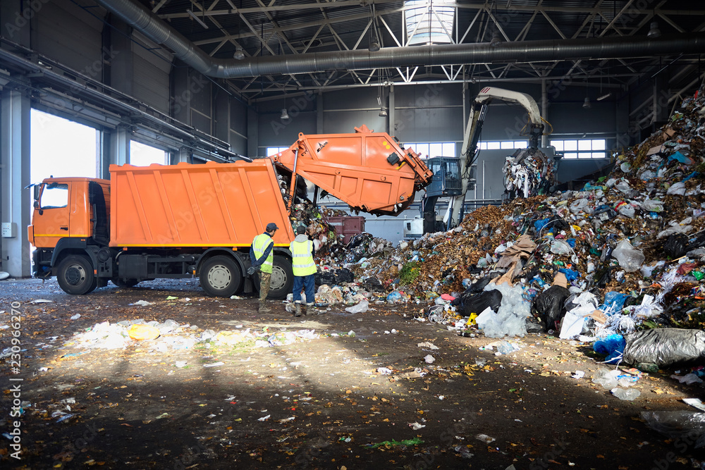 Fototapeta Two workers of recycling plant control process of unloading garbage from garbage truck