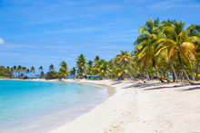 Saltwhistle Bay, Mayreau, The Grenadines, St. Vincent And The Grenadines