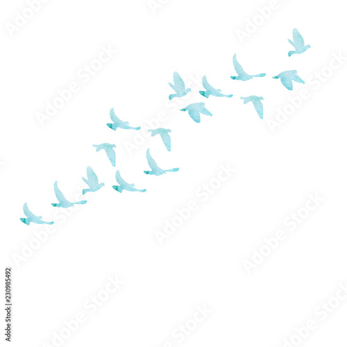 vector, isolated, blue watercolor silhouette of flocks of birds Canvas Print