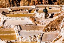 Salt Terraces In The Sacred Va...