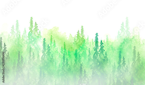 Poster Aquarel Natuur Watercolor group of trees - fir, pine, cedar, fir-tree. green forest, landscape, forest landscape. Drawing on white isolated background. Misty forest in haz. Ecological poster. Watercolor painting