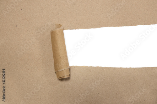 torn brown package rolled up  paper with blank white copyspace Wallpaper Mural