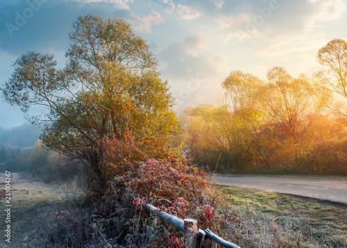 frosty november countryside at sunrise. unusual weather with blue fog in the distance and hoar frost on trees in sunlight near the road