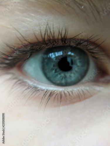 Poster Iris close up of human eye