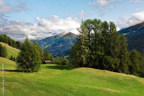 Staande foto Alpen Rescheralm, Reschneralm or Reschenalm, 1983m, at Reschen am Reschenpass, Vinschgau, South Tyrol, Alps, Italy, Europe