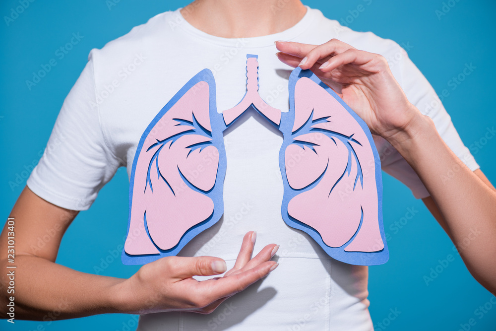 Fototapeta partial view of woman in white tshirt with paper crafted lungs on blue backdrop