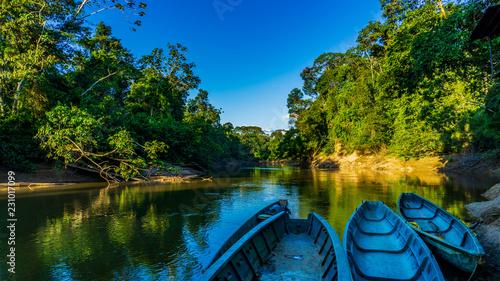 Fotografia Selva Amazonica Ecuador