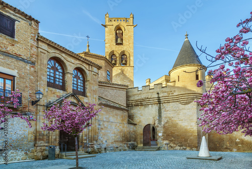 Papiers peints Con. ancienne Palace of the Kings of Navarre, Olite, Spain