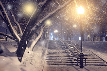Winter Park At Night. Christma...