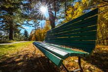 Lonely Wooden Bench On A Sunny...