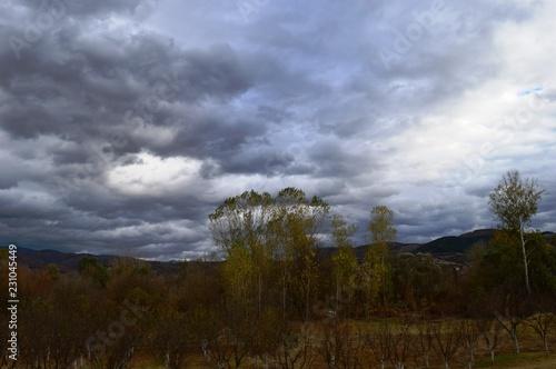 Poster Chocoladebruin landscape in autumn colors