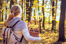 Happy Young Woman With Mushrooms In Wicker Basket Is Walking In Autumn Forest