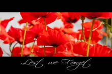 Remembrance Day Background With Poppies And Text: Lest We Forget