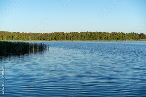 Printed kitchen splashbacks Lake Calm lake, blue sky and green beautiful forest on sunny day