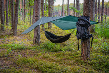 Tree Hammock Tent Hanging Out ...