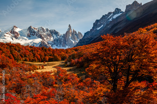 Garden Poster Brown Beautiful autumn view of Cerro Torre mountain. Patagonia, Argentina
