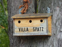 Vogelhaus - Villa Spatz