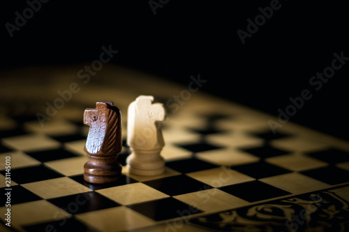Photographie  two chess horses