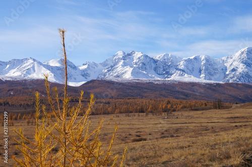 Beautiful Kurai Steppe in the morning,Russia.