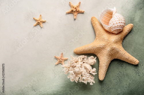 Starfishes with sea shell and coral on color background Fototapeta