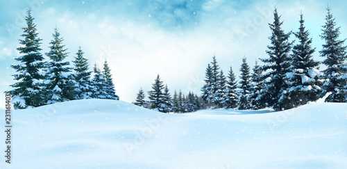 Poster Bleu clair Beautiful winter landscape with snow covered trees.Christmas background