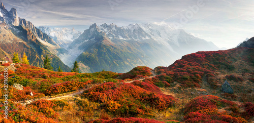 Foto auf Gartenposter Rosa dunkel Red autumn Chamonix in the Alps