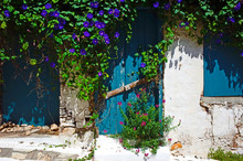 Old White Wall With Closed Blue Door And Window Overgrown With Bindweed On Samos Island, Greece