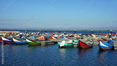 traditional painted moliceiro boats in the harbor