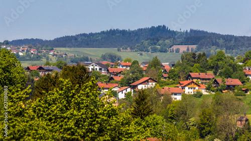 Fototapeta Beautiful view near Regen-Bavaria-Germany obraz na płótnie