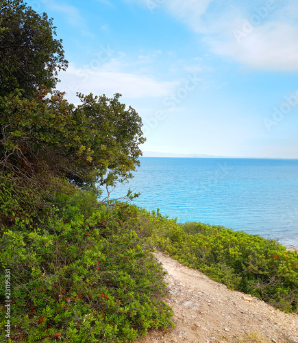 Foto op Plexiglas Cyprus Beautiful shores of Greece in summer