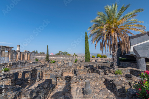 The ruins in the small town Capernaum on the coast of the lake of Galilee Wallpaper Mural