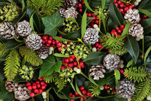 Natural Winter And Christmas B...