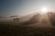 canvas print picture - landscape bathed in fog / Landschaft in Nebel getaucht