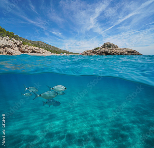 Beach and rock with fish and sand underwater, Mediterranean sea, split view half above and below water surface, Spain, Costa Dorada, Platja Del Torn, l'Hospitalet de l'Infant, Tarragona, Catalonia