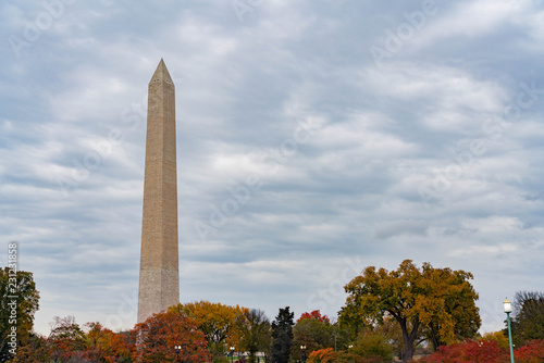 Fotografie, Obraz  Washington Monument in Fall Leaves