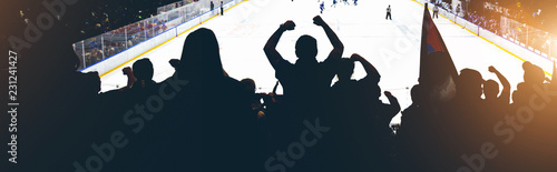 Fototapeta fans on the hockey match