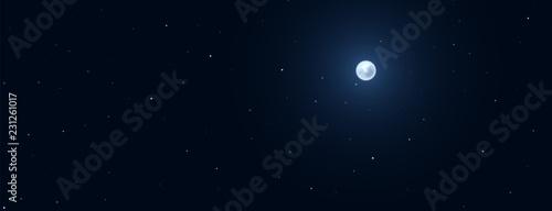 Obraz Night background with full moon on starry background. - fototapety do salonu