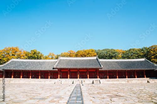 Photo  Jongmyo Shrine with autumn maple in Seoul, Korea
