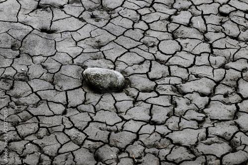 Fotografía  Dry cracked mud close up