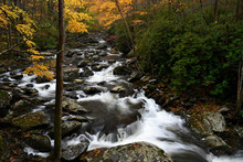 Cascade In Little Pigeon River In The Autumn