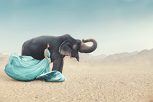 Fashion Portrait Of Young Woman Posing Next To Elephant