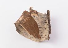 Twisted Tree Bark