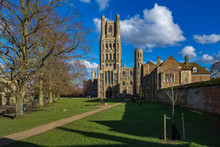 Ely Cathedral, From Palace Green