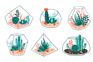 Panel Szklany Boho Set of succulents and cactus with terrariums. Vector floral design
