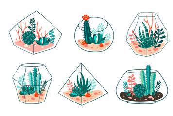 Fototapeta Boho Set of succulents and cactus with terrariums. Vector floral design