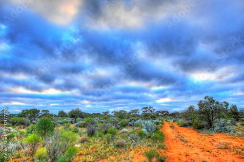 Poster Oceanië Dirt track across Australian outback
