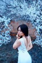 Wonderful Attractive Lady With Dark Black Long Hair And Blue Eyes, Standing In An Arch Of Blooming Magnolias, Dressing Luxurious, Gorgeous White Snow-white Wedding Dress With An Open Back, Cold Colors