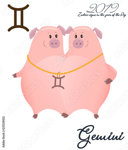 055838f00 Zodiac sign Gemini. 2019 year of the pig. Two piglets twins. Funny horoscope.  Cute animal. Vector illustration in cartoon style. Lettering jelly Gemini.